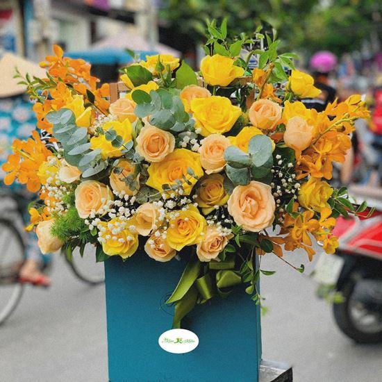 Hoa giỏ hồng vàng, lan nghệ- HG22