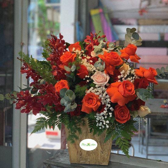 Hoa giỏ đỏ cam, lan đỏ-HG71