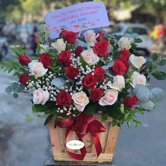 Hoa giỏ hồng đỏ,kem- HG74