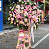 Kệ hoa hồng son môi, hồng dâu- KH14