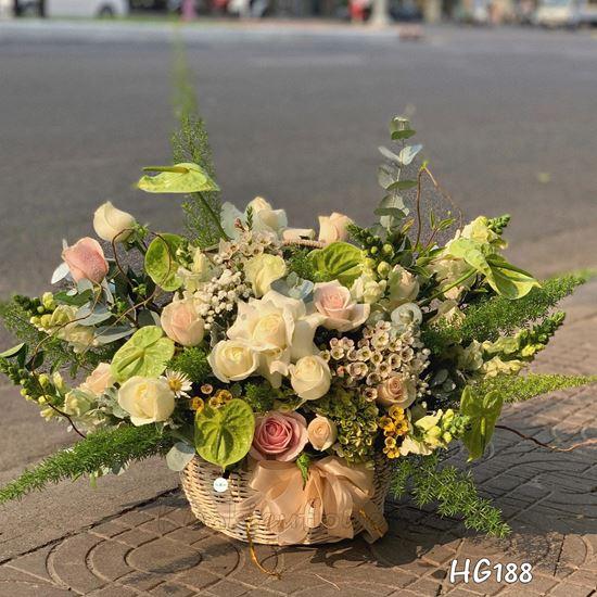giỏ hoa hồng trắng, môn xanh - HG188