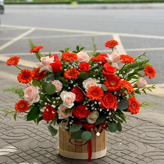 Lắng hoa đồng tiền cam, hoa hồng - HG214