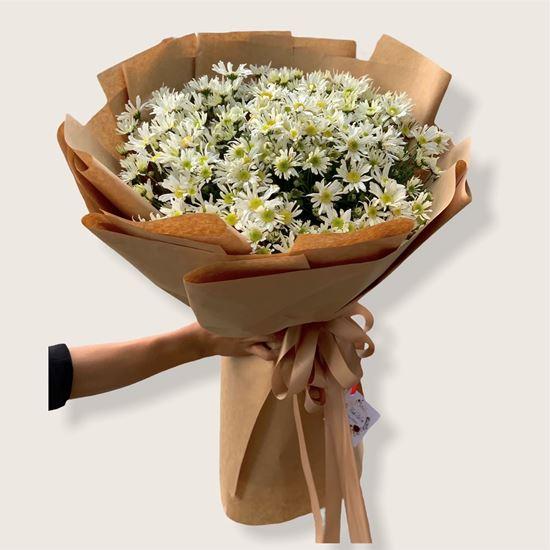 Bó hoa cúc họa mi -HB122